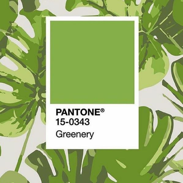 Pantone color of the year 2017 bringing greenery inside for Pantone 2017 greenery
